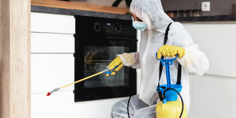 Home Pest Control in Fayetteville, North Carolina